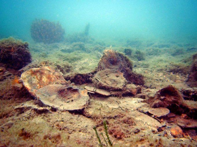 Dead oyster reef
