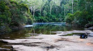 Pollution in the Georges River